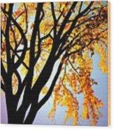 Golden Sillhouette Wood Print