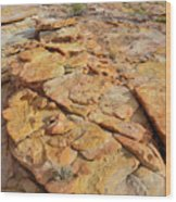 Golden Slopes Of Valley Of Fire State Park Wood Print