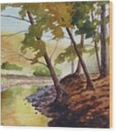 Golden Stream Wood Print