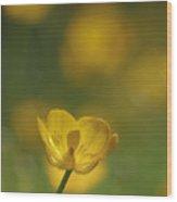 Golden Summer Buttercup 2 Wood Print