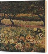 Golden Sunflowers Wood Print