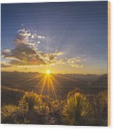 Golden Sunlight Desert Scene Wood Print