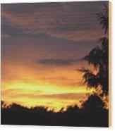 Golden Sunset 2 Wood Print