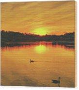 Golden Sunset  Wood Print