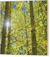 Golden Sunshine Wood Print