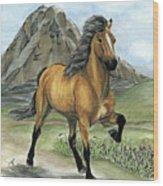 Golden Tolt Icelandic Horse Wood Print