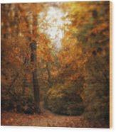 Golden Trail Wood Print