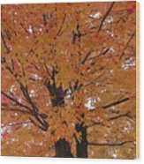 Golden Tree Wood Print