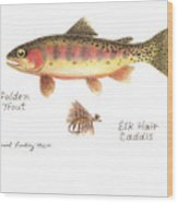 Golden Trout And Elk Hair Caddis Fly Wood Print