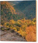 Golden Valleys Wood Print by Ryan Heffron