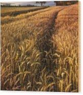 Golden Waves Of Grain Wood Print