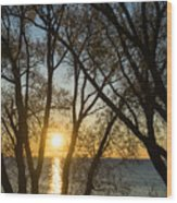 Golden Willow Sunrise - Greeting A Bright Day On The Lake Wood Print