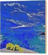 Golden Yarrow Rock Sea Point Lobos Wood Print
