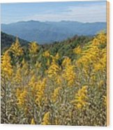 Goldenrod Mountain View Wood Print