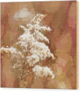 Goldenrod Plant In Fall Wood Print