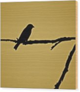 Goldfinch Wood Print