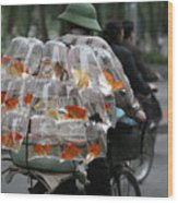 Goldfish In A Bag Vietnam On Bicycle Unique  Wood Print