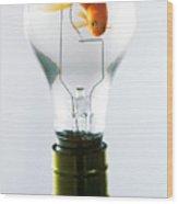 Goldfish In Light Bulb  Wood Print