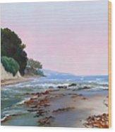 Goleta Beach Rushing Tide Wood Print