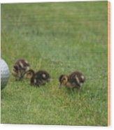 Golf Anyone Wood Print