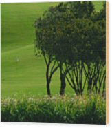 Golf Course Abstract Wood Print