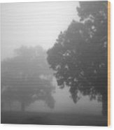 Golf Course With Fog Wood Print