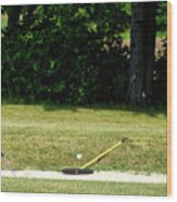 Golfing Sand Trap The Ball In Flight 02 Wood Print