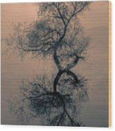 Golyazi Wood Print