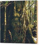 Gondwanaland Dreamtime Wood Print