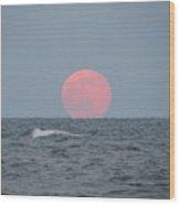 Good Moon Rising  Wood Print