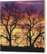 Good Morning Cows Colorful Sunrise Wood Print