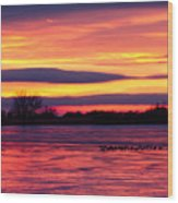 Good Morning Geese Wood Print