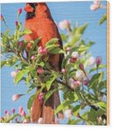 Good Morning Mr Cardinal  Wood Print