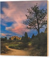 Good Night God's Garden 2 Wood Print