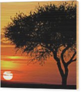 Good Night, Maasai Mara Wood Print