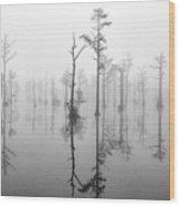 Goodale 12 Wood Print