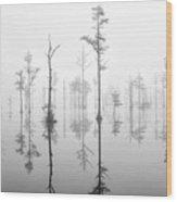 Goodale 13 Wood Print