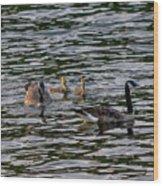 Goose Family Wood Print