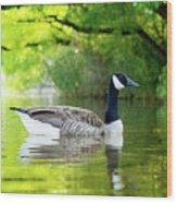 Goose Lake Wood Print