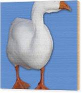 Goose Me Wood Print