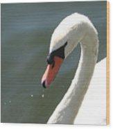 Goose On The Lake Wood Print