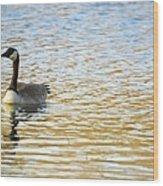 Goose On The Pond Wood Print