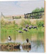 Goose Pond Wood Print