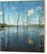 Goose Pond Reflection Wood Print