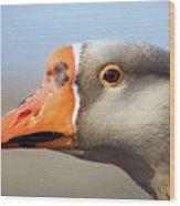 Goose Portrait Wood Print