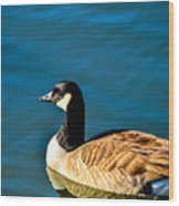 Goose Reflection Wood Print