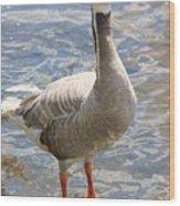 Goosey Goosey Gander... Wood Print