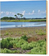 Gordons Pond At Cape Henlopen State Park - Delaware Wood Print
