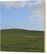 Gorgeous Rolling Hills And Fields On The Cliff's Of Moher Wood Print