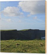 Gorgeous Seascape Along The Cliffs Of Moher In Ireland Wood Print